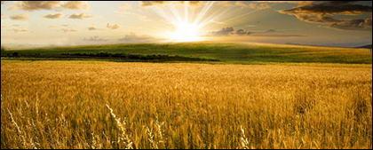 Noite de material de imagem de terras agrícolas