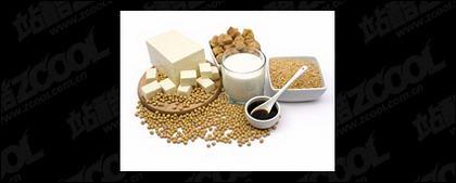 콩 품질 그림 자료