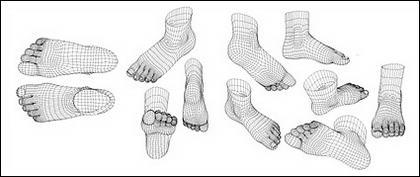 modèle 3D de pieds humaines vecteur de matériau de style
