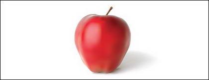 ไอการเรนเดอร์ที่เหมือนจริงของวัสดุเวกเตอร์แอปเปิ้ล
