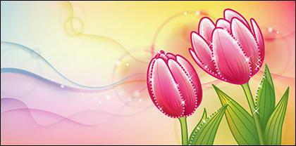 Tulip rêves