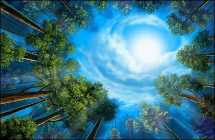 a paisagem de bosques