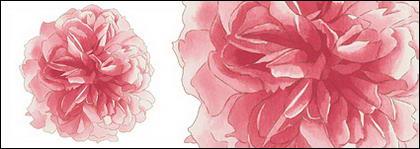 Flores pintados à mão em camadas de material psd-2