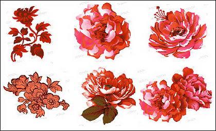 Matériau de fleurs roses psd