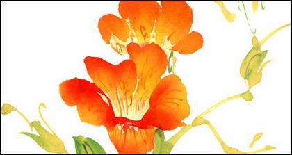 Acuarela de resultados de flores