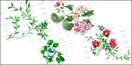 Flores y hojas psd capas de material de moda