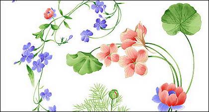Patrones florales de pintado a mano de moda de PSD capas de material-2