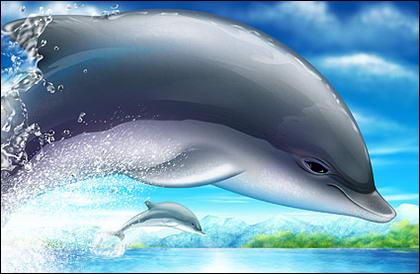 Прохладный, прыжки дельфинов psd слоистых материалов