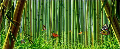 Bambu e borboleta