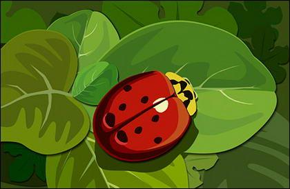 緑の葉のてんとう虫