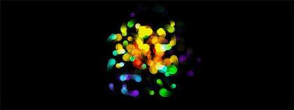 Effets de couleur de la source du point d'éclair