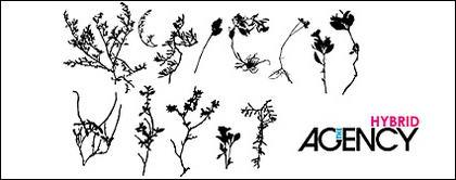 พืชที่เหี่ยวแห้งเวกเตอร์