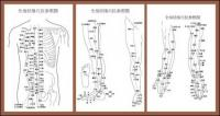 Тело точек иглоукалывание меридианы цифра