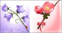 Красивые цветы векторный материал