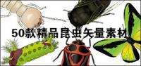 Изысканный насекомых-1
