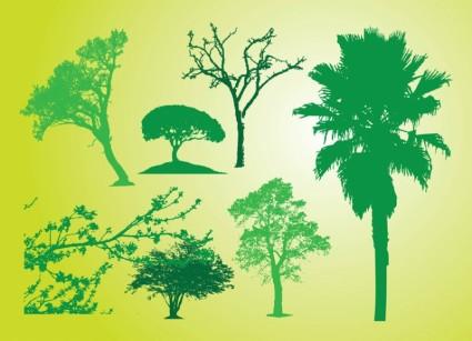 Siluet semak pohon