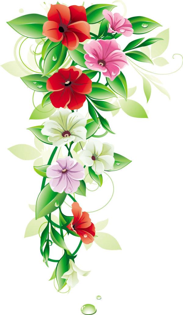ดอกไม้สวยงาม 01 - vector