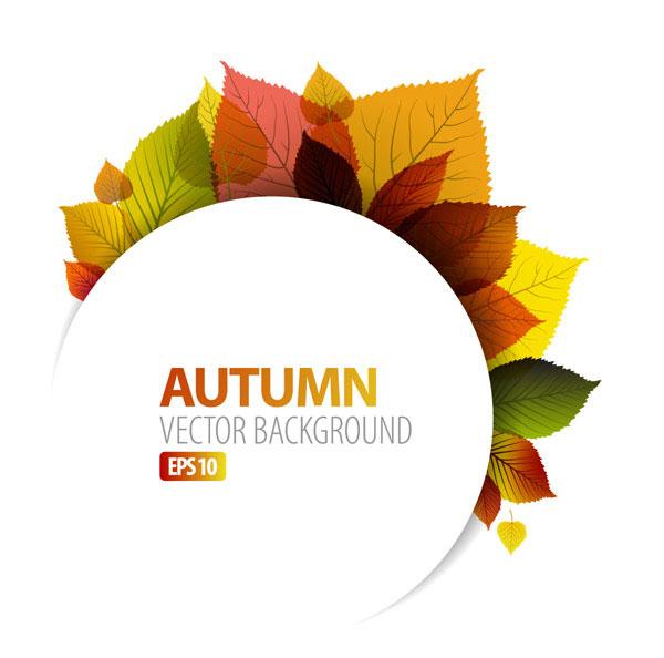 الكلمات الرئيسية: جولة، أوراق، أوراق الخريف، الخريف ...