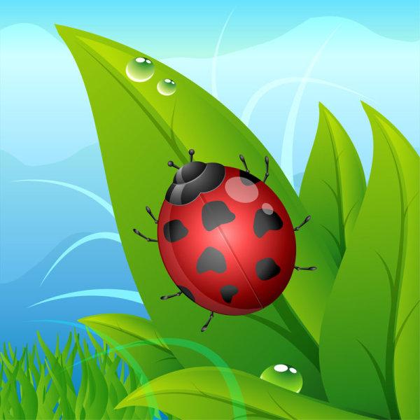 Klicova Slova Kreslene Ilustrace Beruska Kapky Vody Zelene